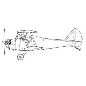 Bowers Fly Baby Line Drawing 2973