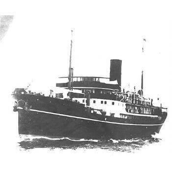 Shenking SS MM1195