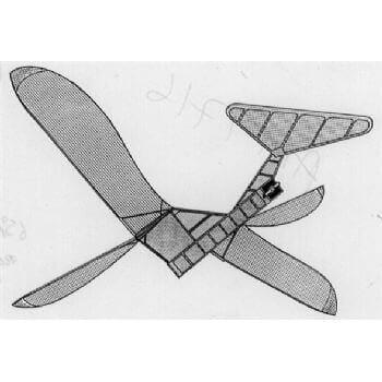 AM1716 - Flapjack