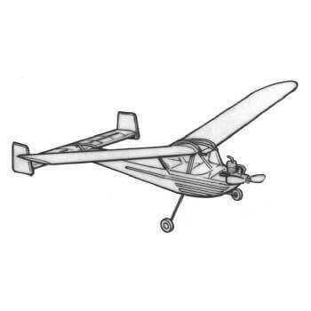 Palmetto Bug Plan MAG111