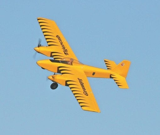 RC2133 Grumpy Tigercub Plan
