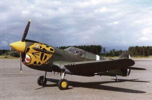 """Curtiss P-40E Kittyhawk (65.25"""") Plan"""